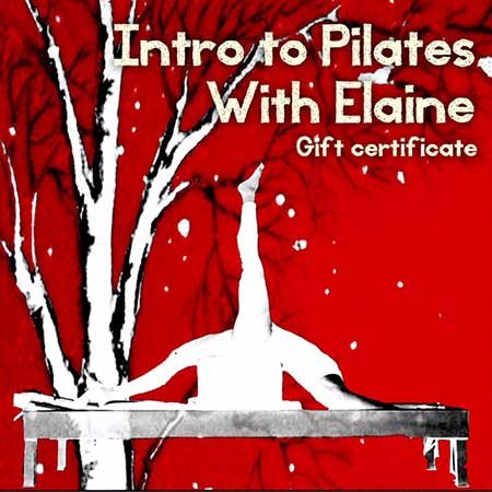 Intro to Pilates with Elaine