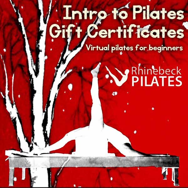 Intro to Virtual Pilates Package