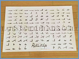 pilates-guild-return-to-life-poster