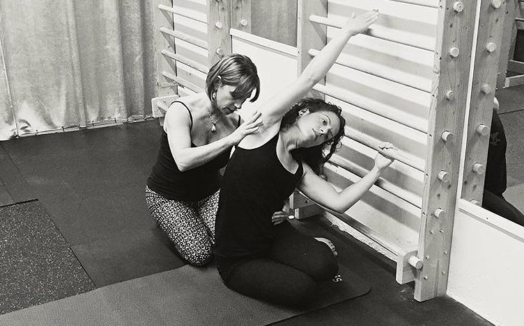 rhinebeck-pilates-swedish-bars-workshop-2016